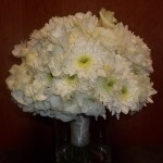 Lush all white mix of Hydrangea, Mums, Freesia and Lisianthus.