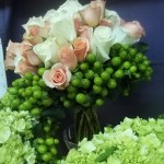 Bridal bouquet of roses with a collar of green hypericum berry surrounded by the attendants' bouquets of hydrangea.