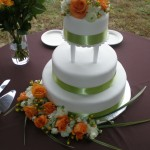 UT inspired wedding right down to the cake.