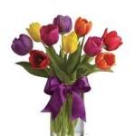 tulip vase1
