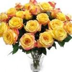 Lush grouping of 2 dozen yellow roses.