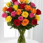 2doz mix roses