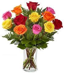 doz mixed roses