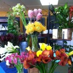 Calla lilies (in foreground) come in a variety of colors and drape gracefully.